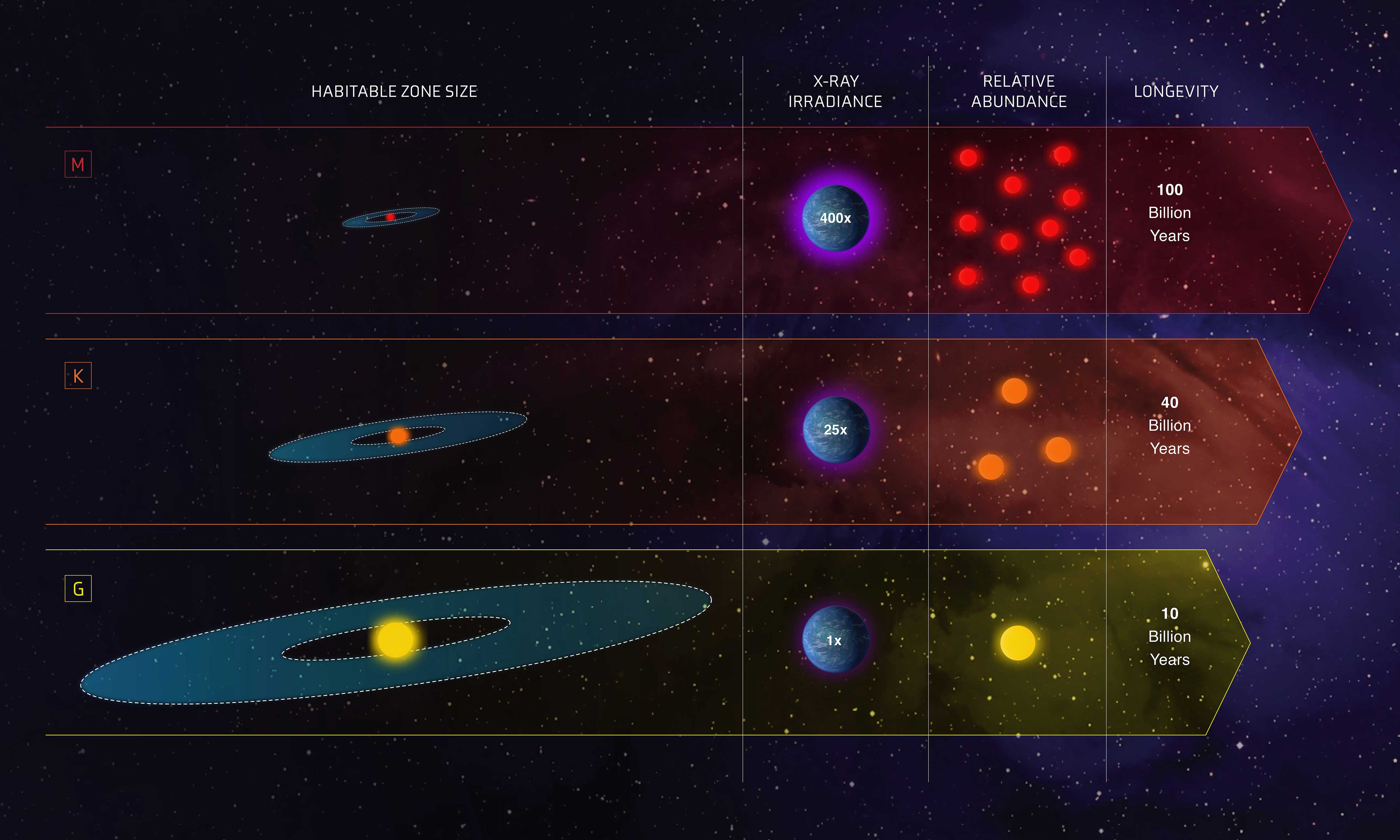 An infographic showing the habitable zones around three different star types. It's a small region close to M-type stars, the most prevalent in our galaxy. It's a bigger zone around K-type stars and the biggest habitable zone is around G-type stars, like our sun, but the star's life is 10 billion years, compared with 100 billion years for the prevalent M dwarfs.