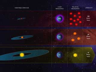 Infographic showing 3 types of stars in our galaxy: M, G and F types. M types are blasted with radiation while orange dwarfs, the F type have more radiation effects than our sun but last a lot longer.