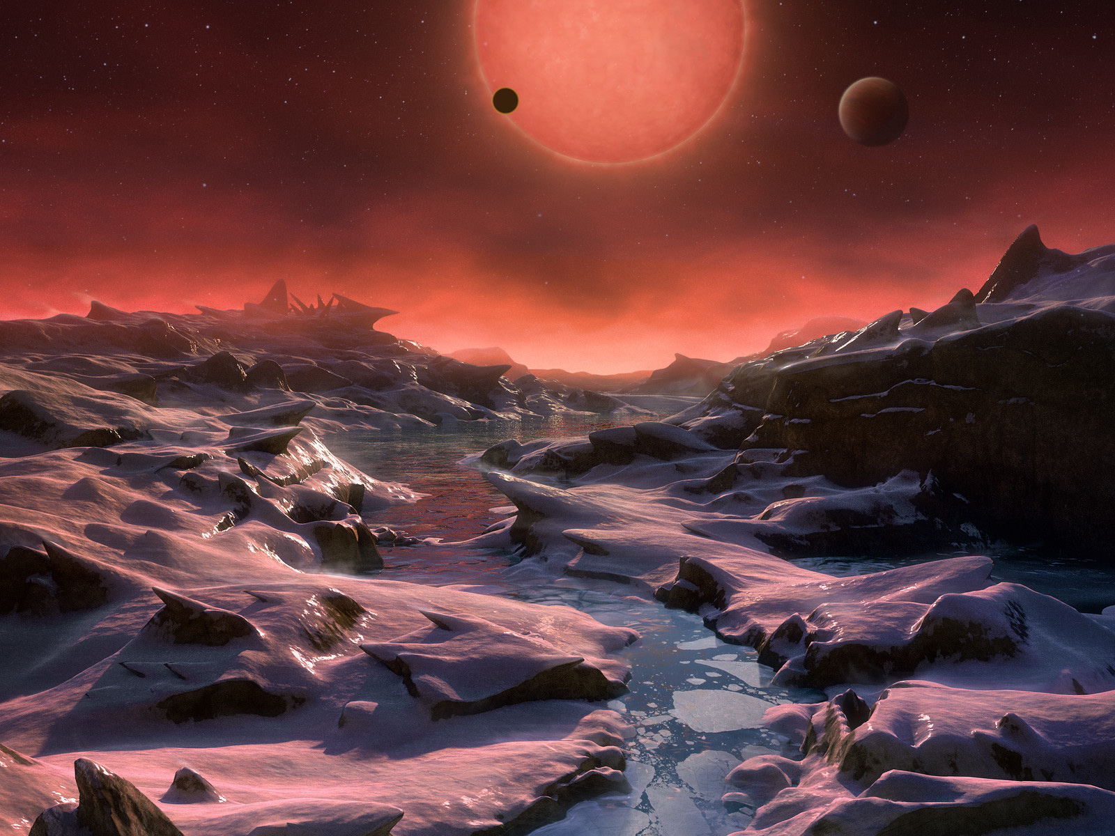 A surface view of a TRAPPIST-1 world